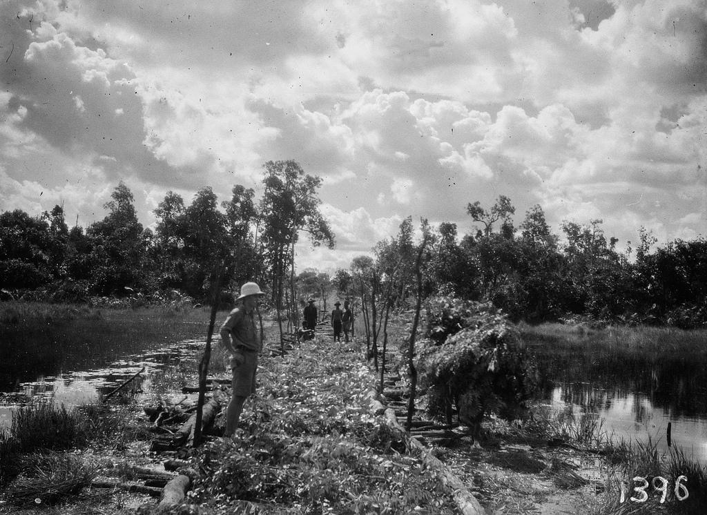 1396. Музец.  Самодельный мост из веток и брёвен, построенный на болотистой местности