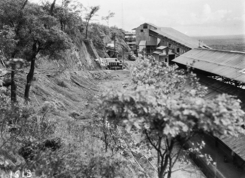 1613. Фабрика с железнодорожной станцией