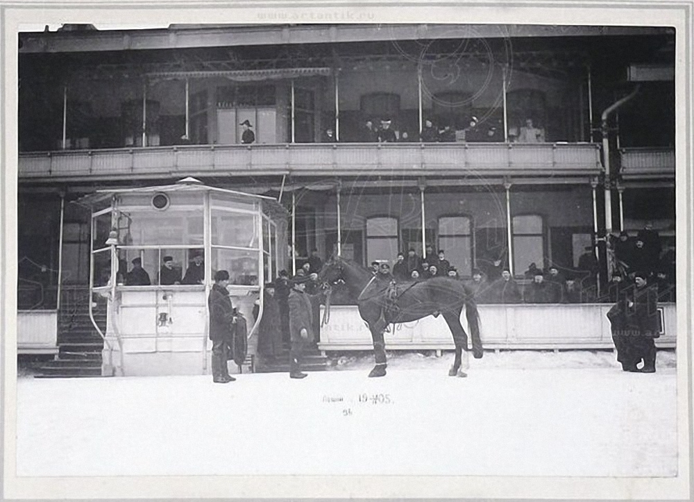 1905. Пятигорский ипподром. Жеребец Леший