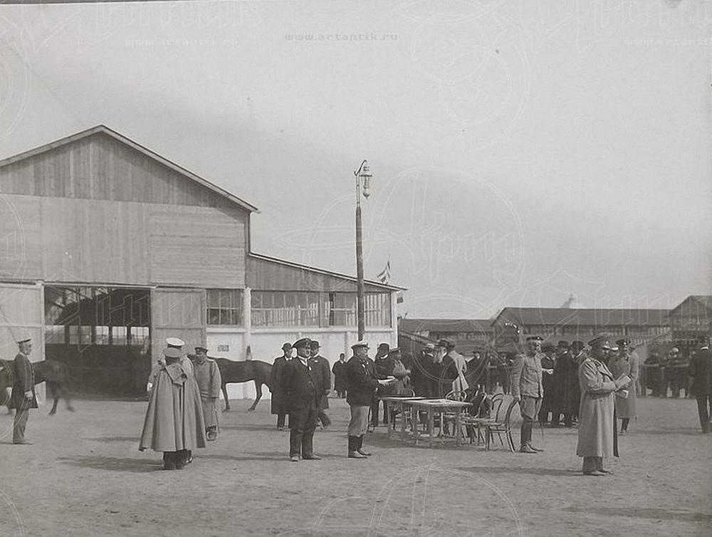 1910. Всероссийская конская выставка в Москве  (2)
