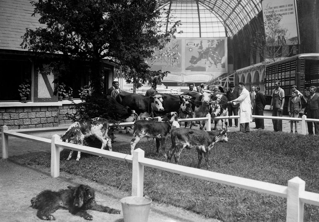 1941. Реконструкция фермы на выставке La France Europeenne в выставочном зале Гран Пале