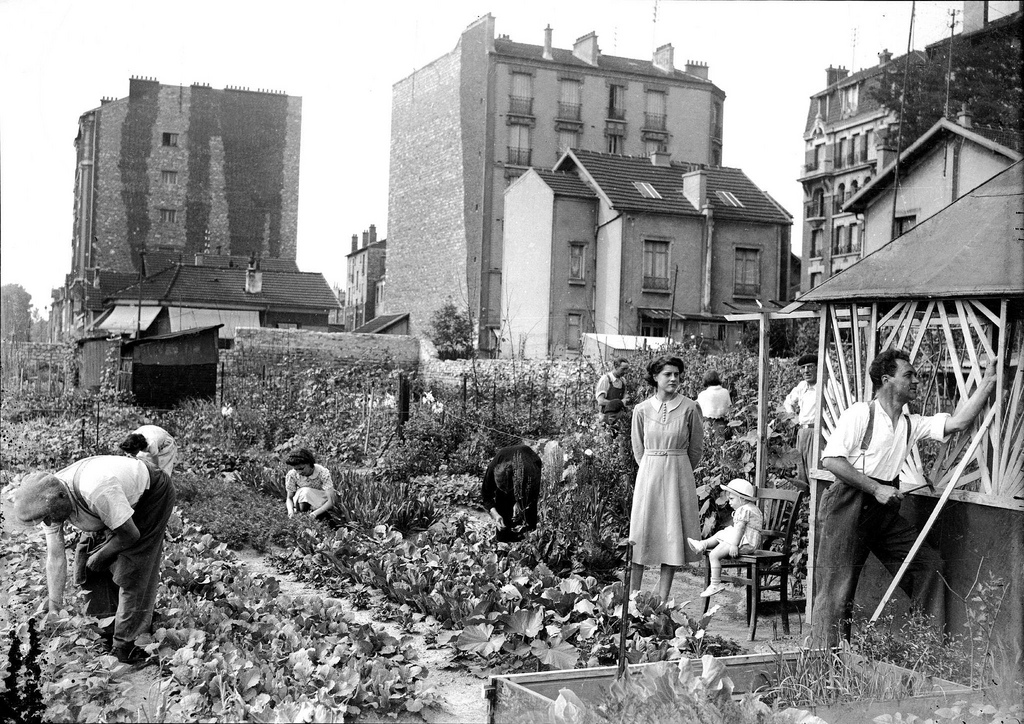 1942. Парижский огород
