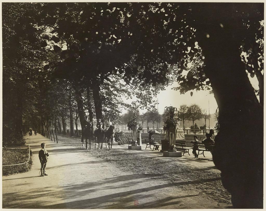 Летний сад. Аллея со стороны Лебяжьего канала. 1913