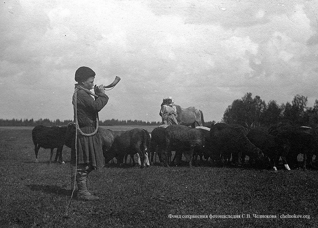Окрестности Москвы. Пастушок. 1900-е