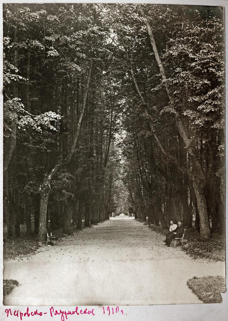 Петровско-Разумовское. Липовая аллея. 1910