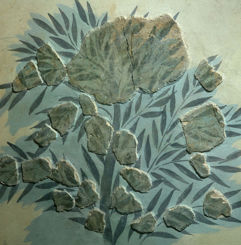 Оливковое дерево (фрагмент)
