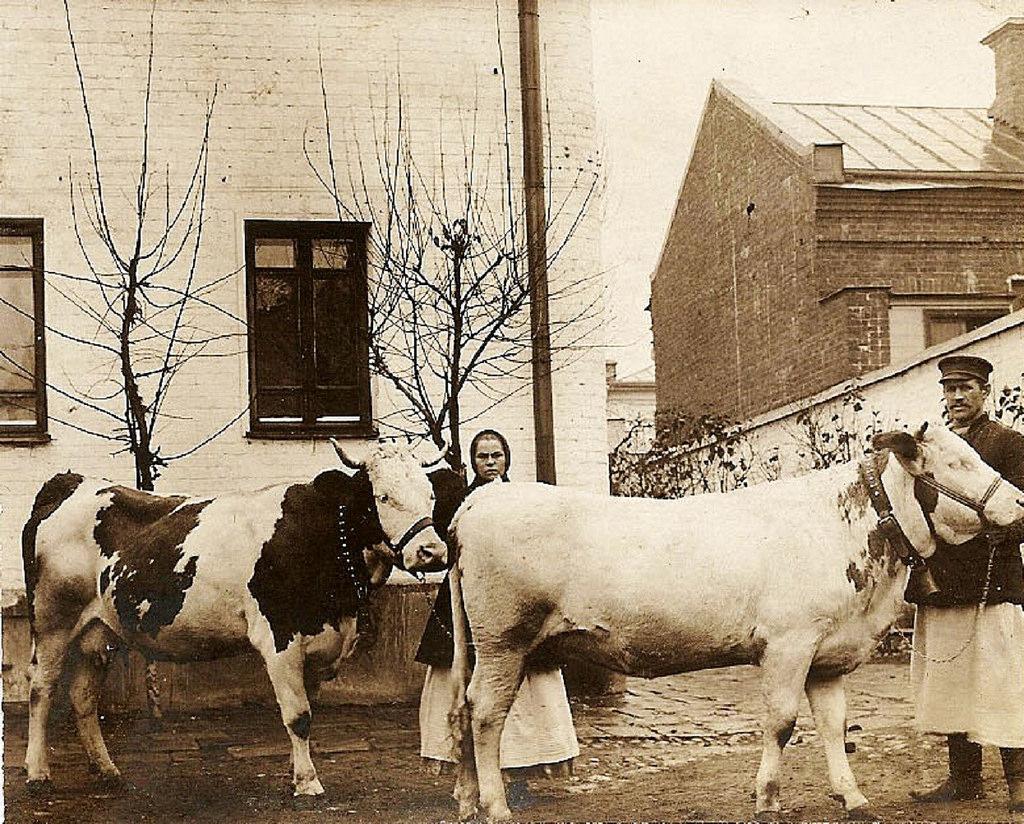 Двор дома № 7 в Яковлевском переулке. 1910-е