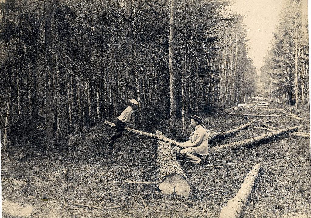 Клязьминская просека. 1895