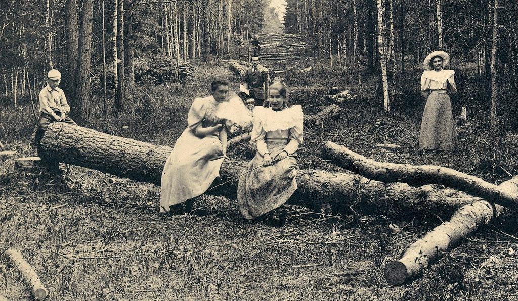 Клязьминская просека. 1895.