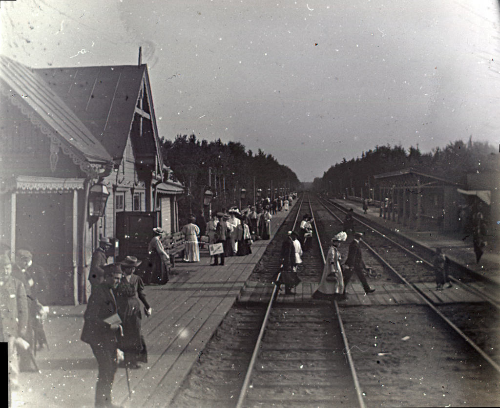 Станция Тарасовка. Дачники приехали.