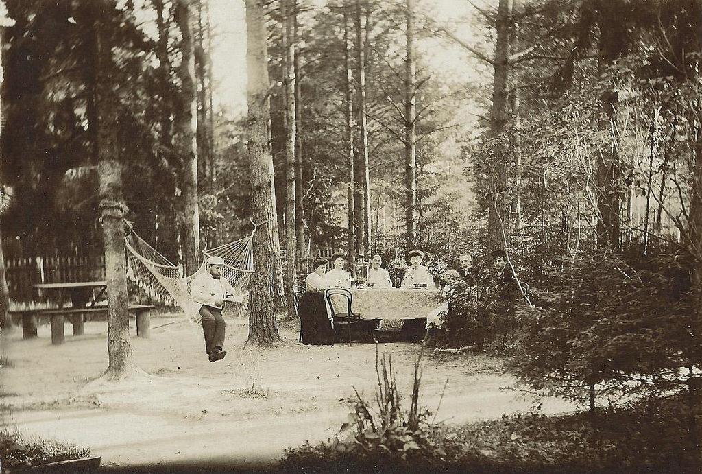 Тарасовка. На даче купца Григория Георгиевича Смирнова. Чаепитие