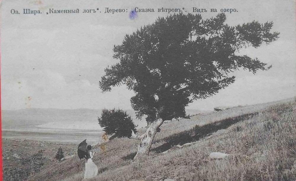Вид на озеро. Каменный лог