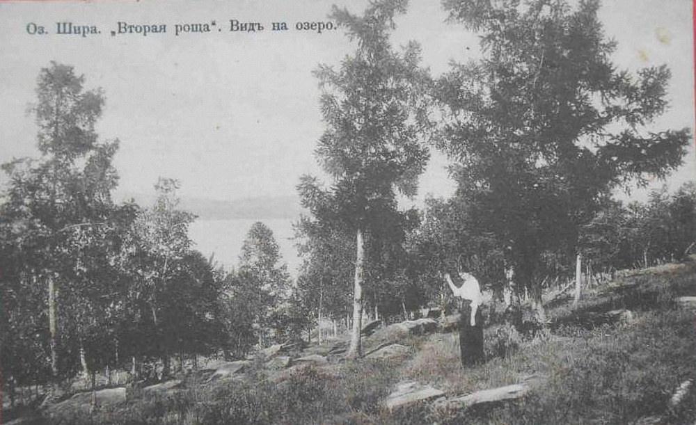 Вторая роща. Вид на озеро