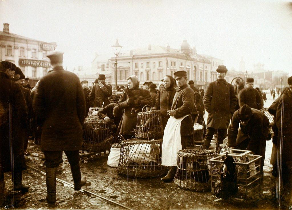 Птичий рынок на Трубной площади. 1908