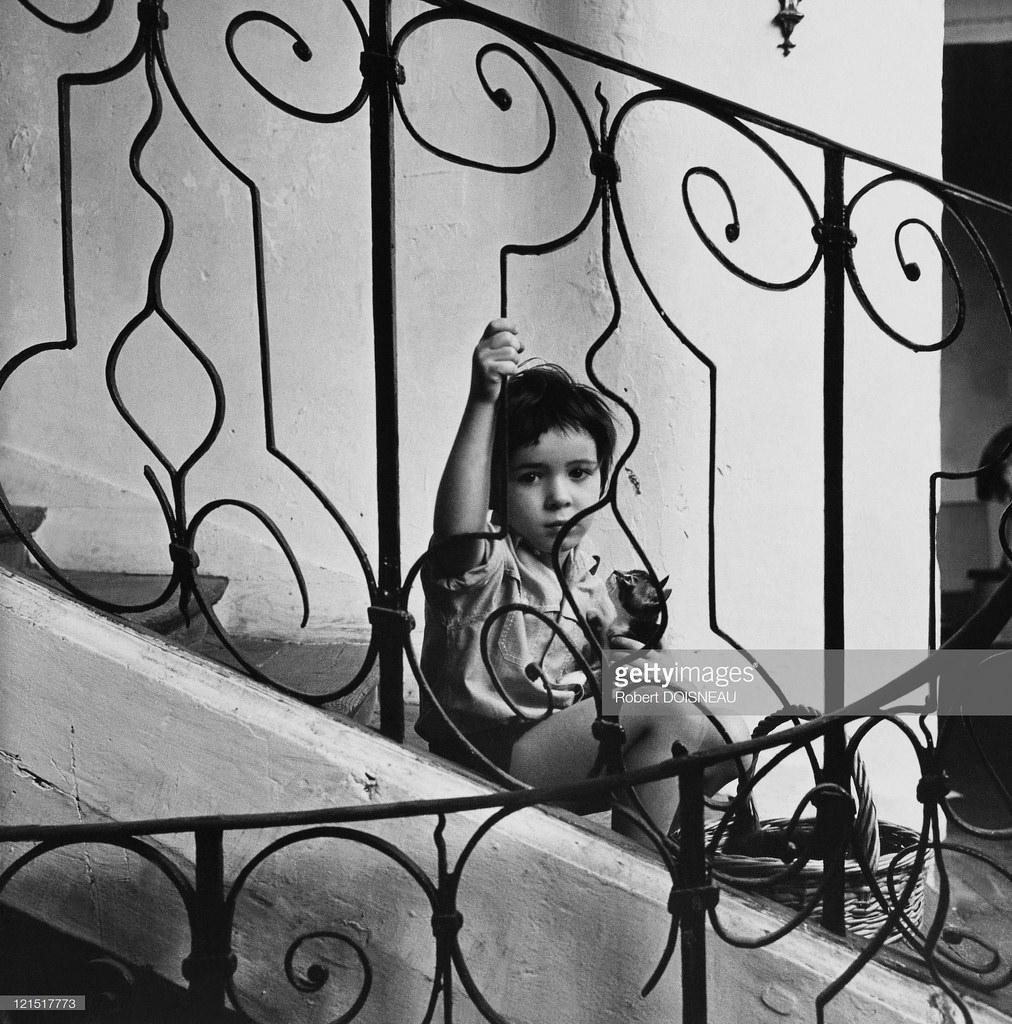 1950-е. Мальчик на лестнице с кошкой на руках. Париж