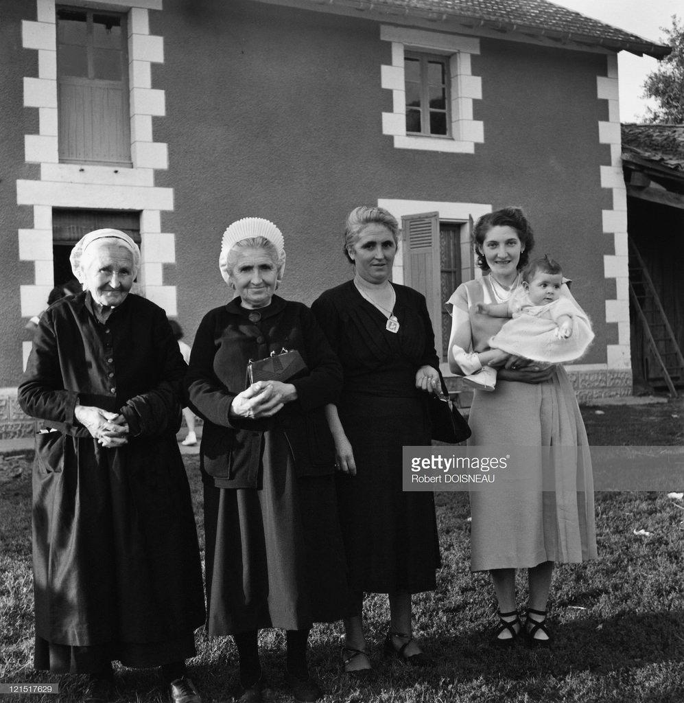 1951. Пять поколений пуатевинов