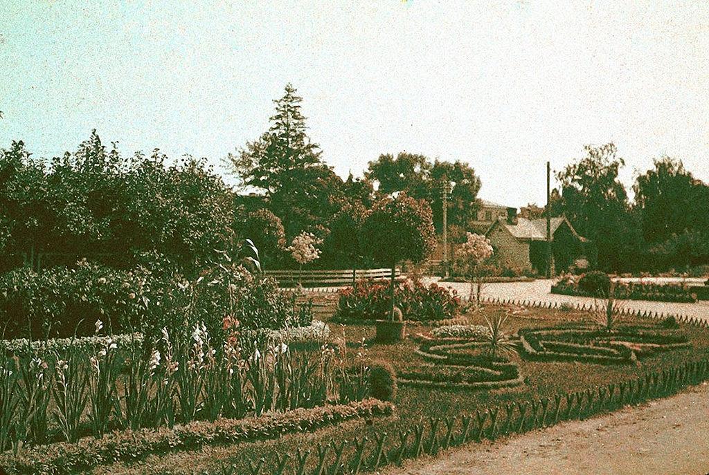 Клумба Державинского сада. 1911