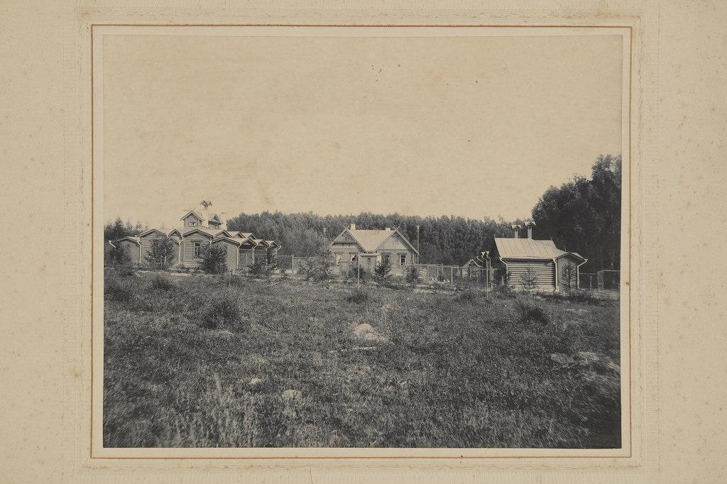 1903. Михайловское. Птичник