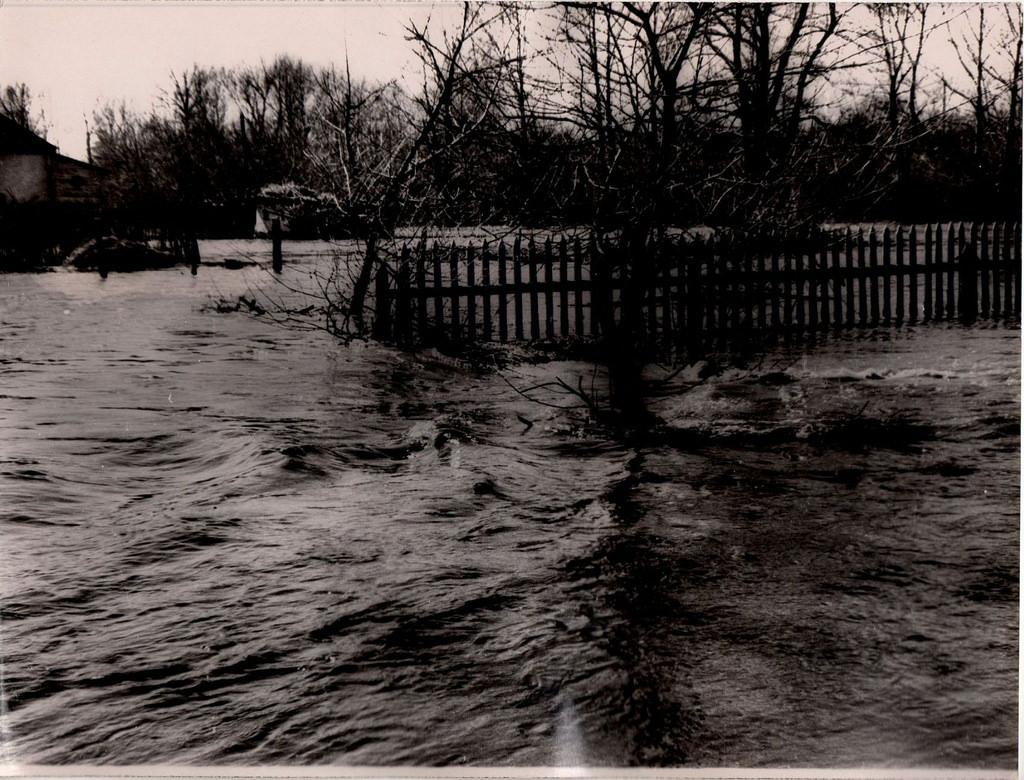 1957. Разлив реки Кинель г. Куйбышев