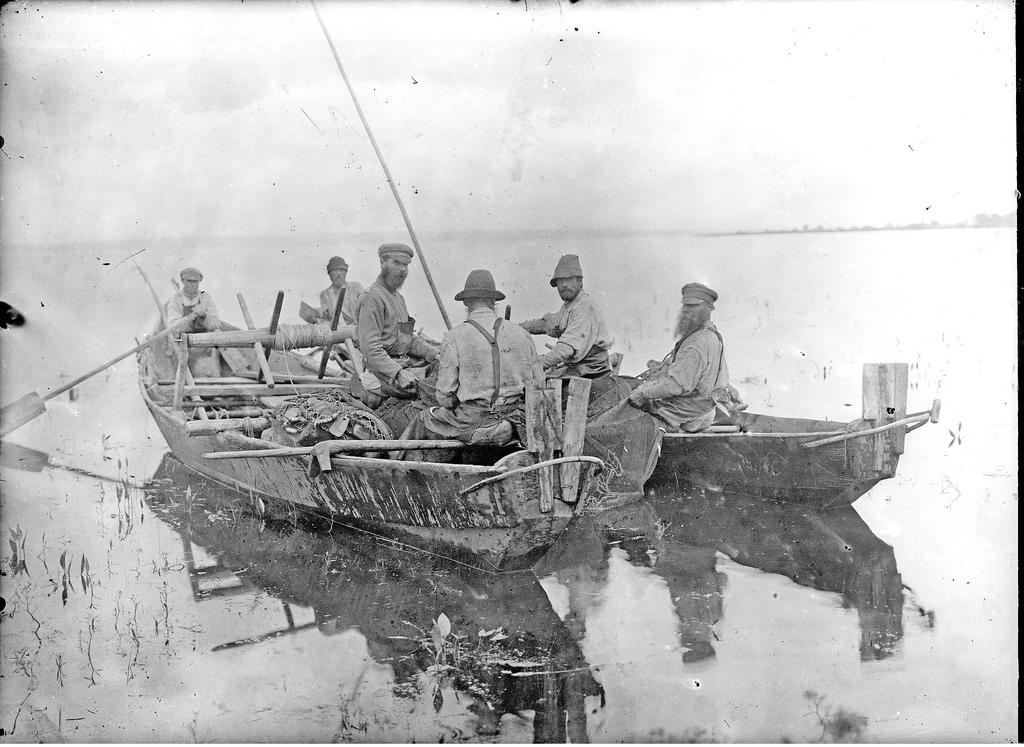 Лов рыбы неводом. 1914