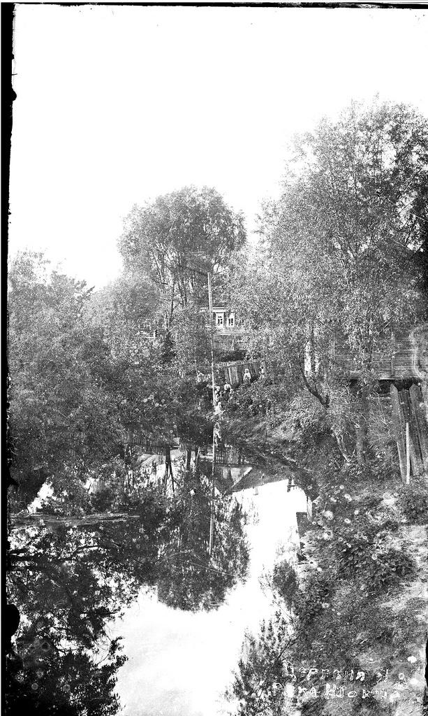 Окрестности Галича. Река Шокша. 1913
