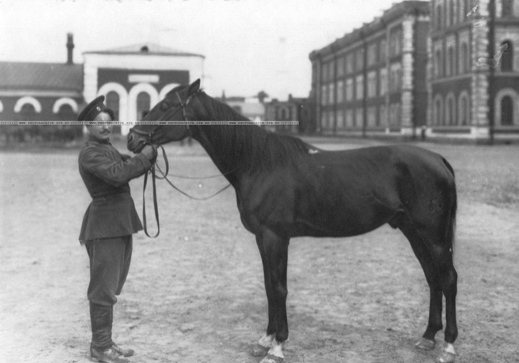 Казак с конем во дворе казармы. 1913 (2)