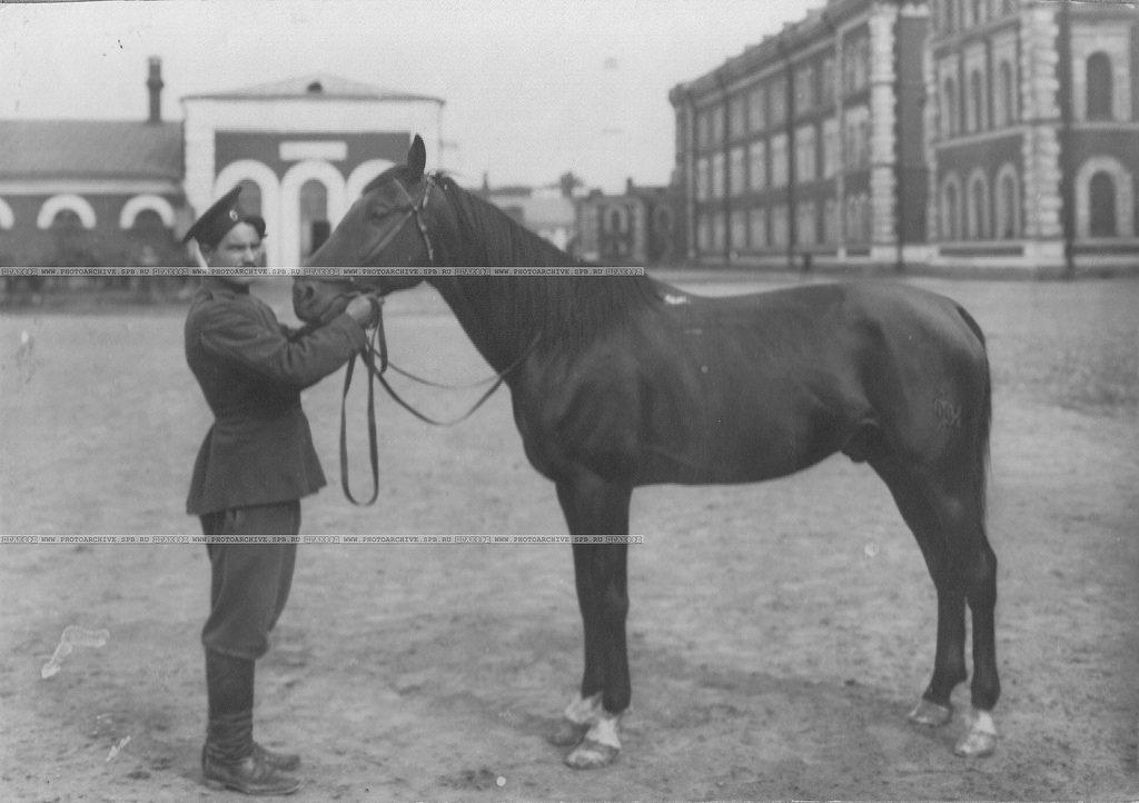 Казак с конем у казарм полка