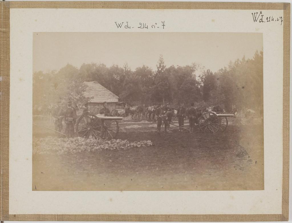 [Альбом де 23 фот. крупные военные маневры в Японии в 1892 -11