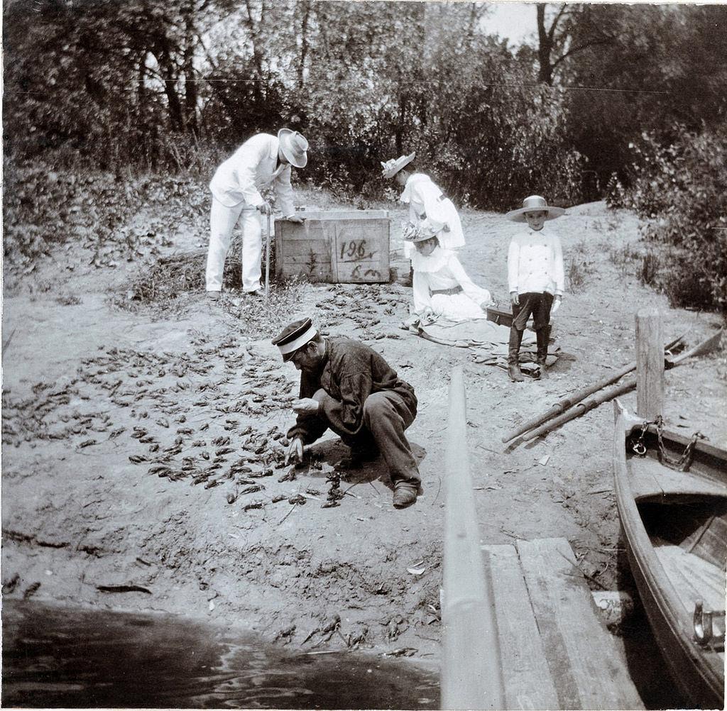 Дети и взрослые выпускают в реку раков