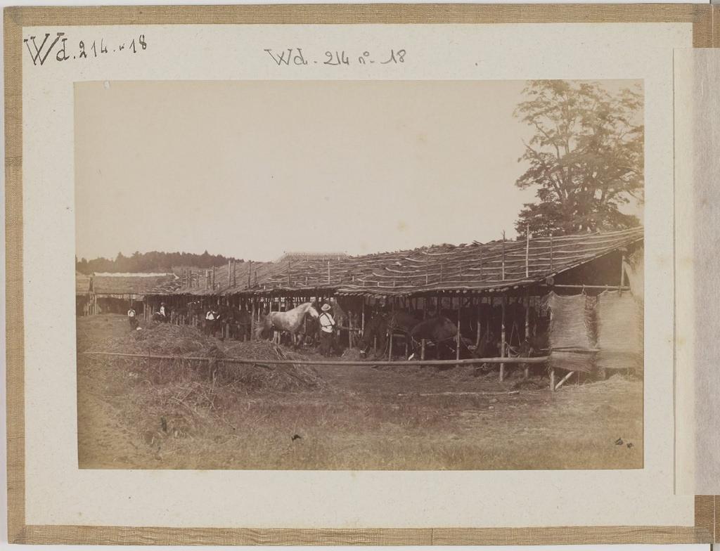 [Альбом де 23 фот. крупные военные маневры в Японии в 1892 -22