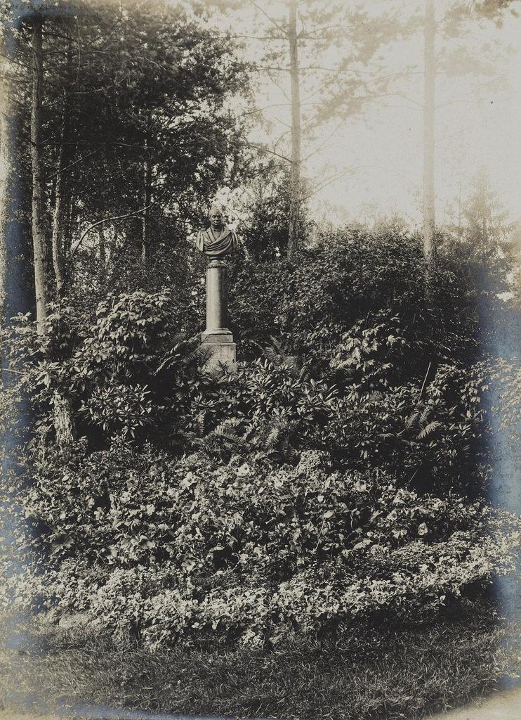1900-е. Бюст Д.Н. Шереметева в цветнике
