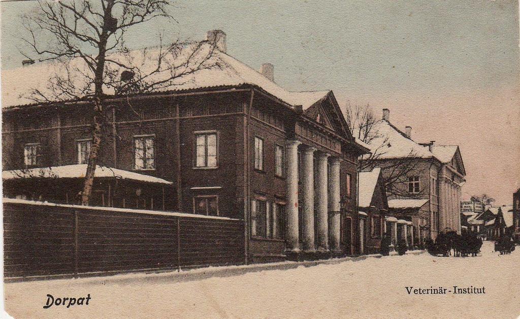 Ветеринарный институт
