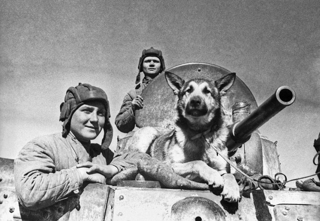 Экипаж советского бронеавтомобиля БА-10 старший сержант Е.Эндрексон, сержант В.П.Ершаков и овчарка Джульбарс. Южный фронт