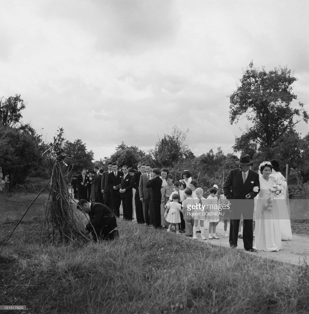 1951. Свадьба в провинции.