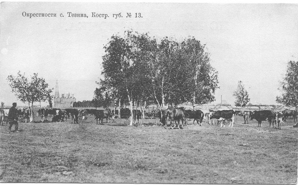 Окрестности Тезино