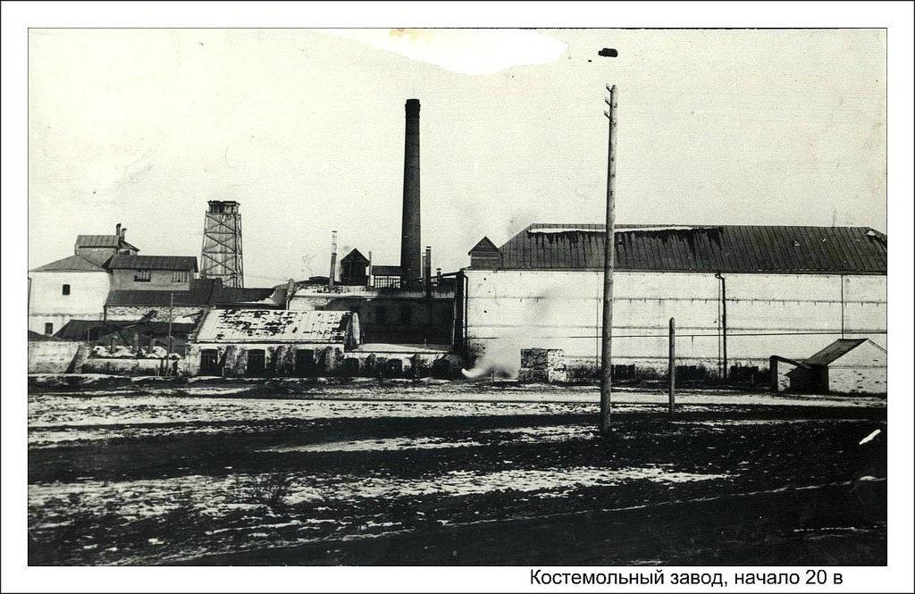 Костемольный завод
