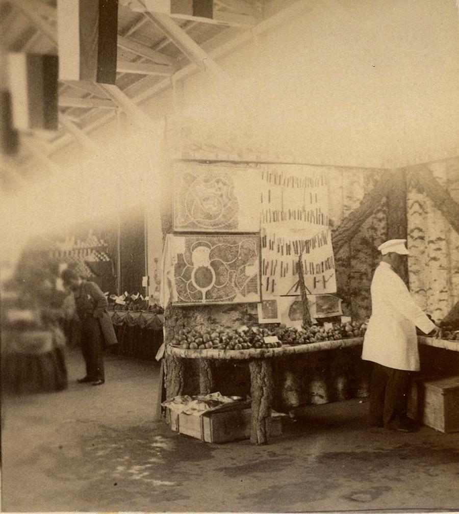 Выставка плодоводства из Ацхура Ахалцихского уезда