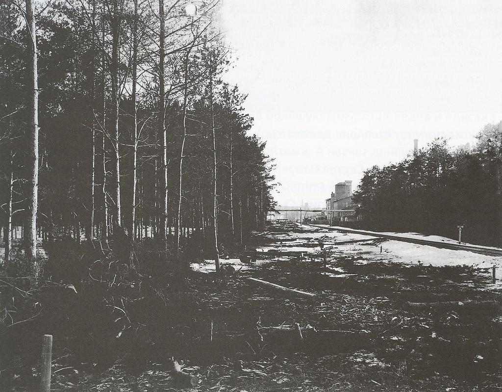 03. Железнодорожная ветка в Тюфелевой роще