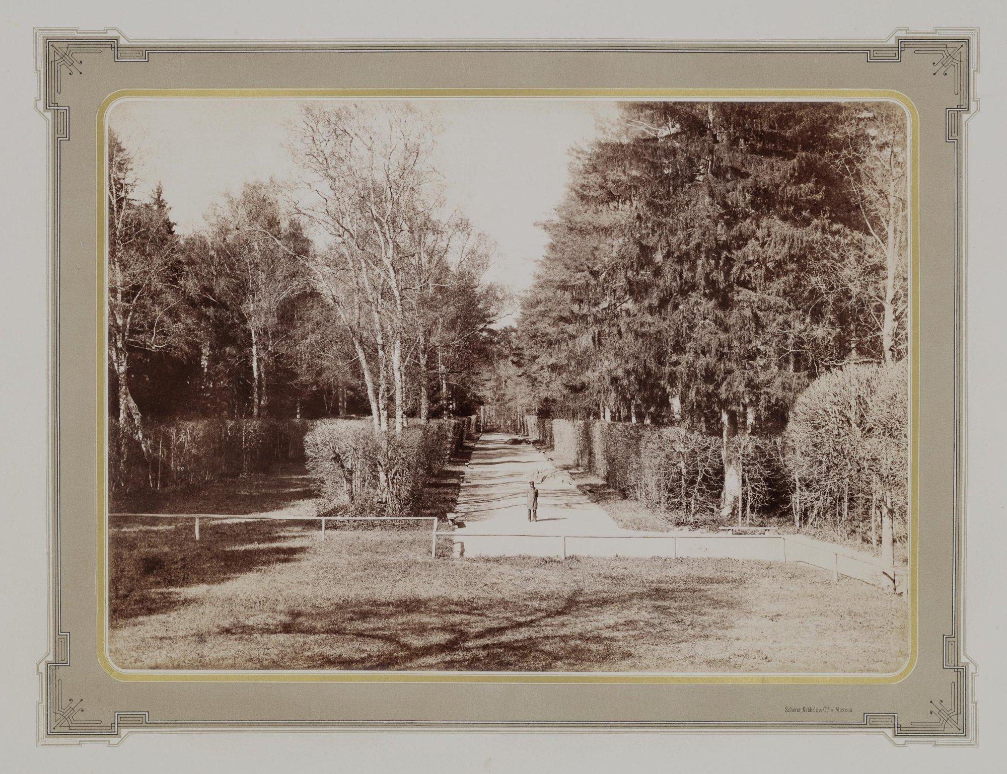 1883-1886. Усадьба Кусково. Парк