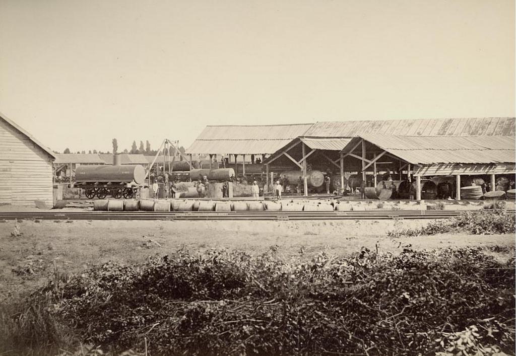 Товарная станция. 1885