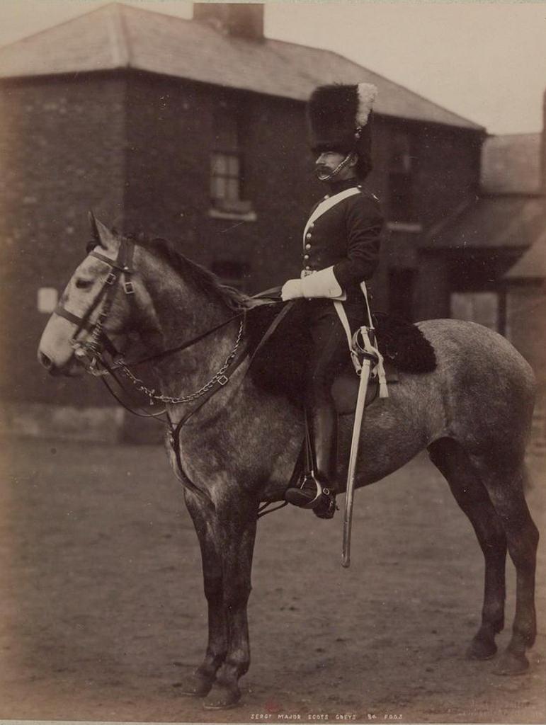 08. Сержант-майор 2-го лейб-драгунского полка