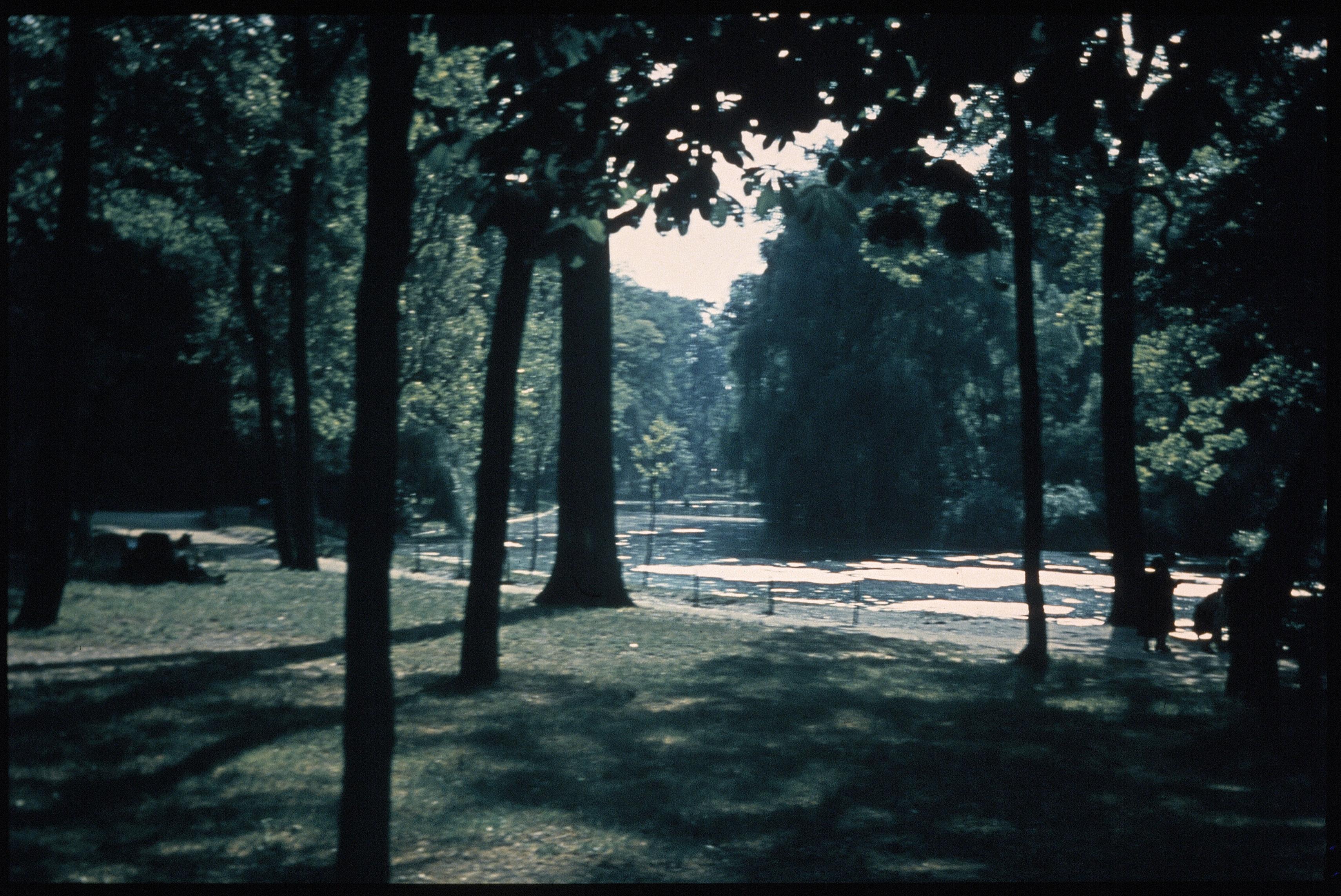 Сентябрь в Булонском лесу