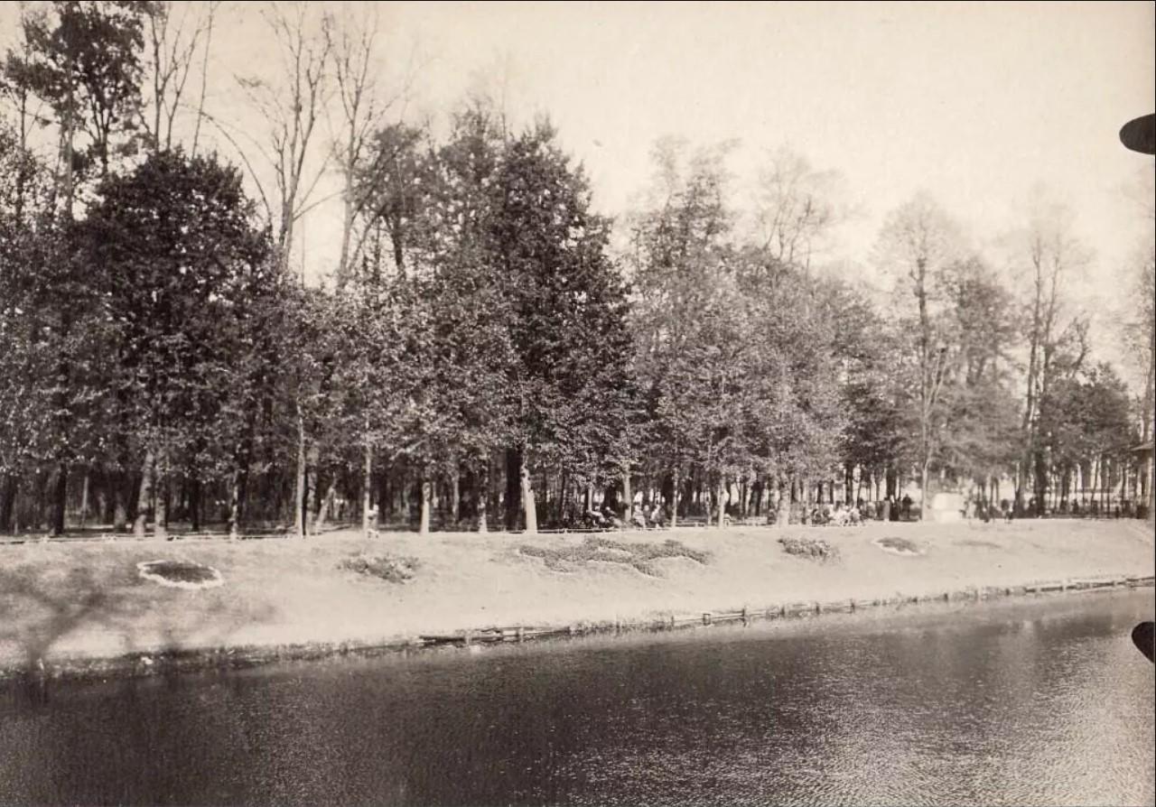 Берег пруда в Летнем саду