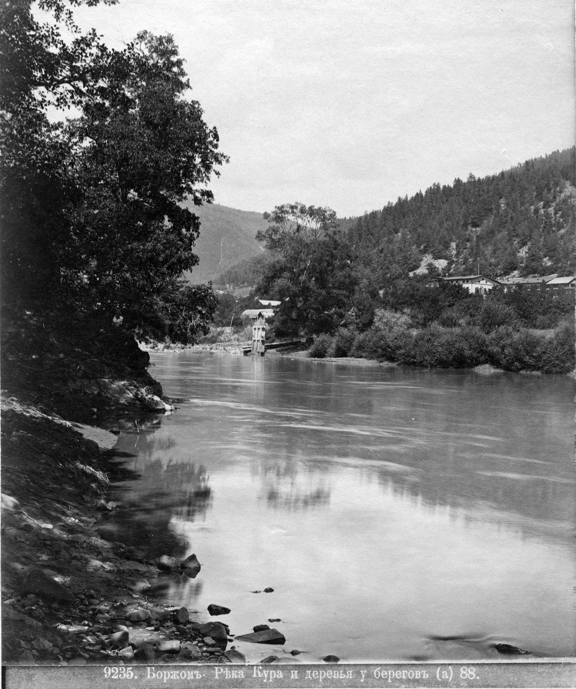 Река Кура и деревья  у берегов (2)