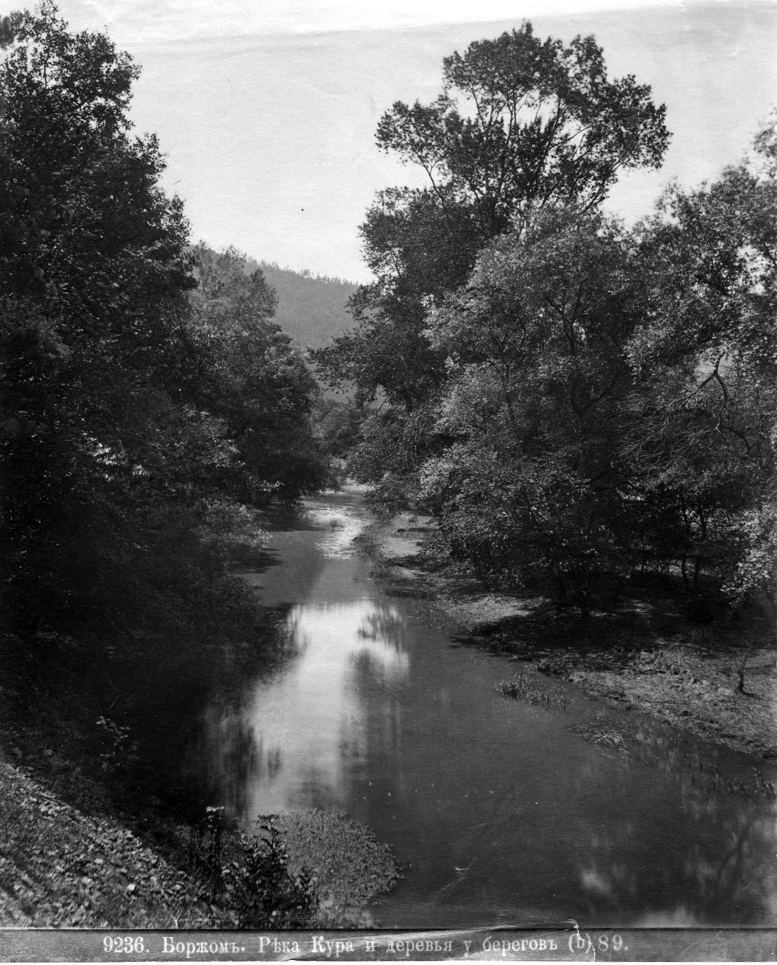 Река Кура и деревья  у берегов