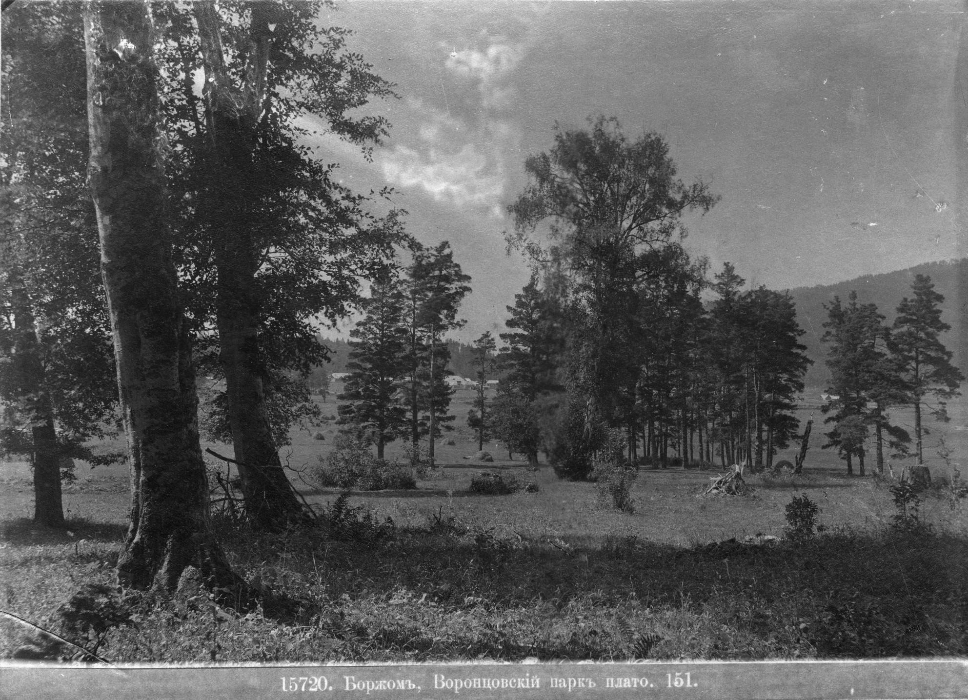 Воронцовский парк, плато