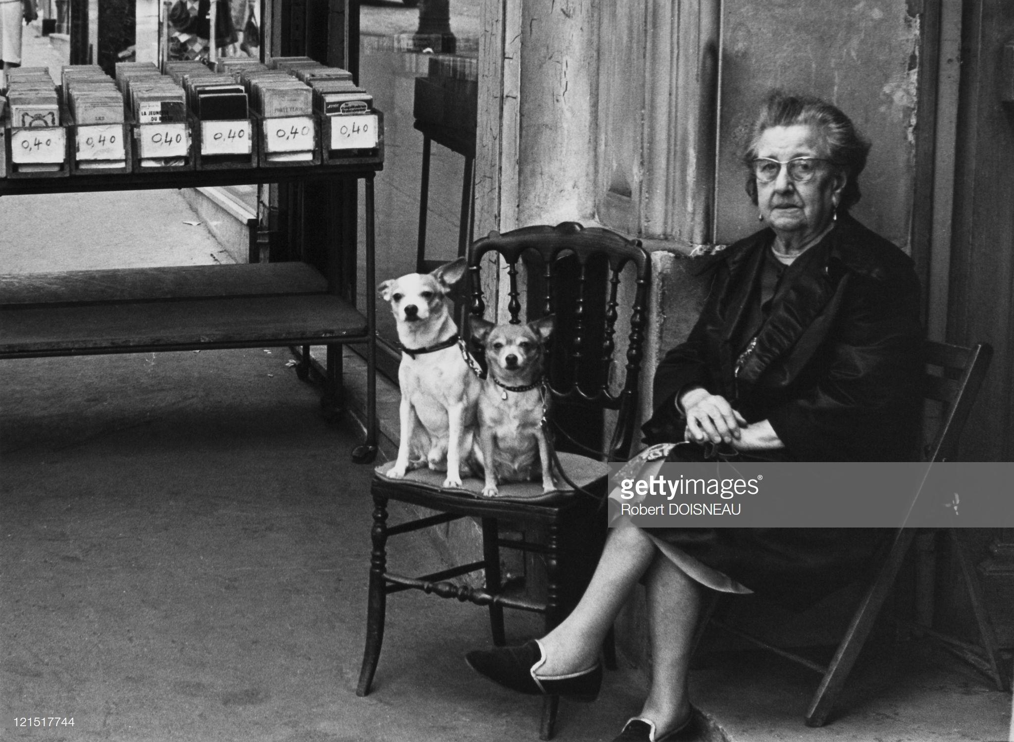 1950. Пожилая женщина с собаками