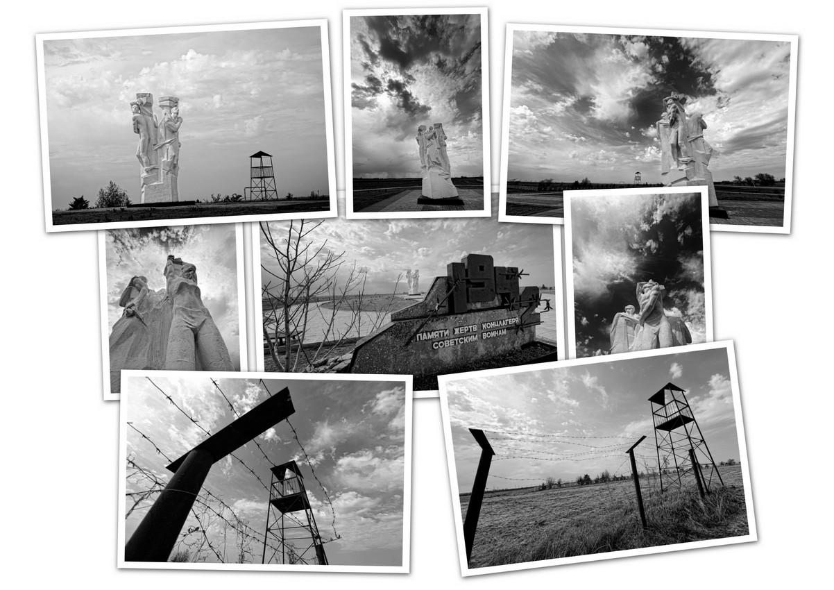 APC_Collage - 2019.05.03 15.59 - 001