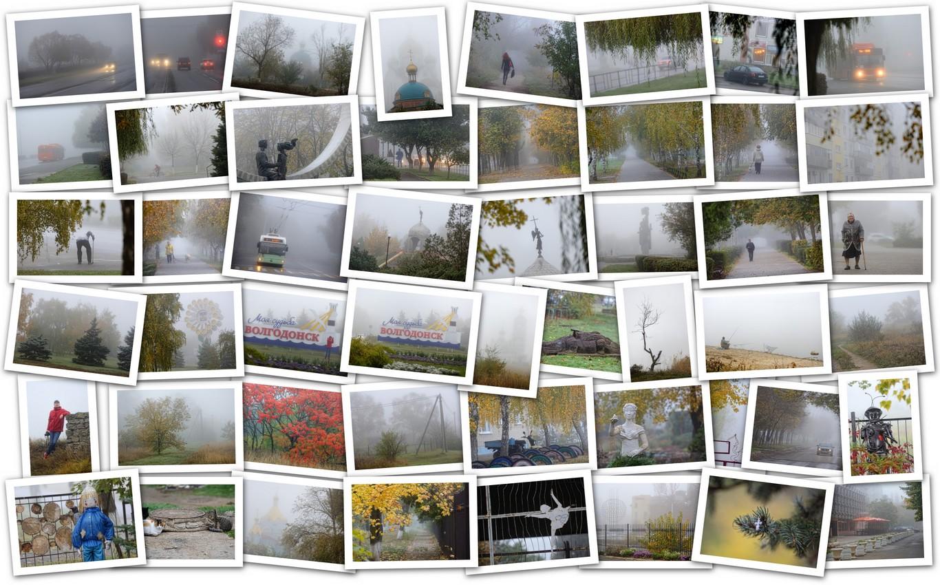 APC_Collage - 2019.10.20 19.21 - 001