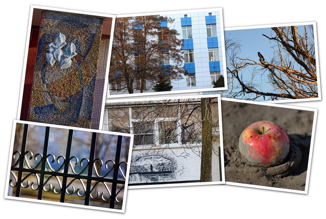 APC_Collage - 2020.02.19 07.03 - 001